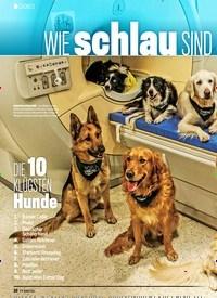 Titelbild der Ausgabe 16/2019 von DOKU:WIE schlau SIND Hunde WIRKLICH. Zeitschriften als Abo oder epaper bei United Kiosk online kaufen.