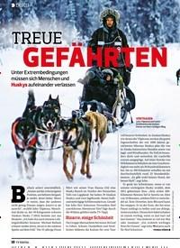 Titelbild der Ausgabe 2/2020 von DOKU: TREUE GEFÄHRTEN. Zeitschriften als Abo oder epaper bei United Kiosk online kaufen.