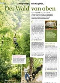 Titelbild der Ausgabe 5/2019 von Auf Wipfelpfaden, in Hochseilgärten …: Der Wald von oben. Zeitschriften als Abo oder epaper bei United Kiosk online kaufen.