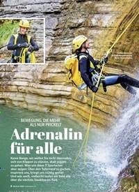 Titelbild der Ausgabe 3/2020 von BEWEGUNG, DIE MEHR ALS NUR PRICKELT: Adrenalin für alle. Zeitschriften als Abo oder epaper bei United Kiosk online kaufen.