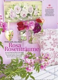 Titelbild der Ausgabe 1/2019 von Wirklich dufte, diese Blüten: Rosa Rosenträume. Zeitschriften als Abo oder epaper bei United Kiosk online kaufen.