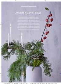 """Titelbild der Ausgabe 4/2019 von """"WAR IM WALD""""-STRAUSS. Zeitschriften als Abo oder epaper bei United Kiosk online kaufen."""