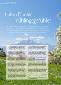 Titelbild der Ausgabe 2/2020 von Nachgefragt: Haben Pflanzen Frühlingsgefühle?. Zeitschriften als Abo oder epaper bei United Kiosk online kaufen.