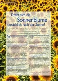 Titelbild der Ausgabe 4/2020 von Dreht sich die Sonnenblume tatsächlich nach der Sonne?. Zeitschriften als Abo oder epaper bei United Kiosk online kaufen.