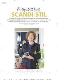 Titelbild der Ausgabe 4/2020 von Farbig statt bunt: SCANDI-STIL. Zeitschriften als Abo oder epaper bei United Kiosk online kaufen.