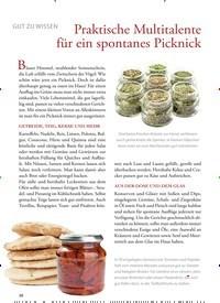 Titelbild der Ausgabe 34/2019 von GUT ZU WISSEN: Praktische Multitalente für ein spontanes Picknick. Zeitschriften als Abo oder epaper bei United Kiosk online kaufen.
