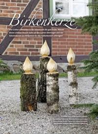 Titelbild der Ausgabe 1/2019 von Birkenkerze. Zeitschriften als Abo oder epaper bei United Kiosk online kaufen.