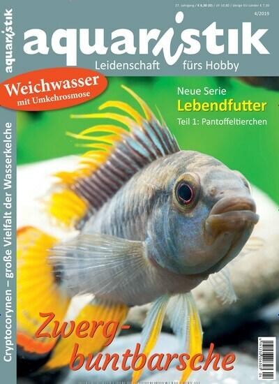 c32c8cc712 Aktuelles Titelbild von aquaristik - epaper. Entdecken Sie jetzt die Ausgabe  4/2019.